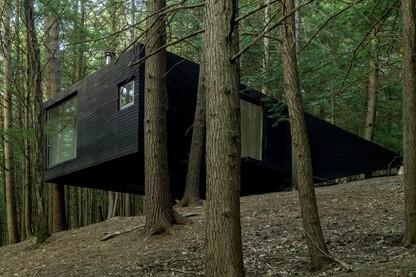 Half-Tree House