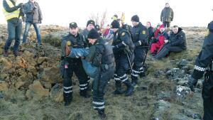 Protesters objecting to the proposed construction of a road near Reykjavik, Iceland, are carried away by police. The protesters claim the road, which cuts through protected lava-strewn land, would harm the habitat of elves.