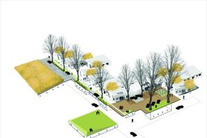 Better Site Planning and Cheap Ways to Greeen a House