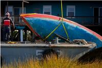New York Comes to Grip With Abandoned Boats
