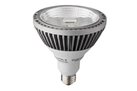 PAR38 LED, Acuity Brands/Acculamp