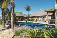 Stunning Backyard Pools
