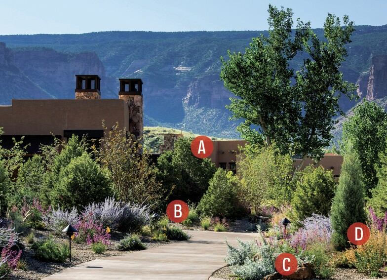 Water-Wise Landscaping For All Regions