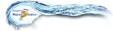 Dolphin Waterslides Logo