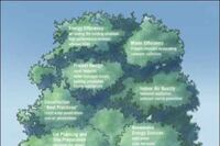Practical Green for Coastal Homes