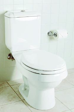 DUAL FORCE: The Rockton dual flush toilet conserves water without sacrificing performance, its manufacturer says. The company's Dual Force technology offers a choice between two water levels for every flush: 1.6 or 0.8 gallons. The flapperless valve and trap-way design maximize the force of gravity, allowing 100 percent of the water to pass through the rim to keep the bowl clean. The unit has a two-button flush actuator and is available in white, almond, biscuit, and ice grey. Sterling. 920-457-4441. www.sterlingplumbing.com.