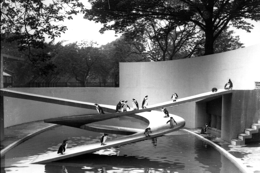 Ove Arup's Penguin Pool at the London Zoo, 1934
