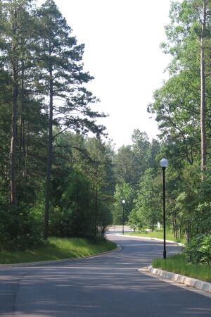 WINDING ROAD: Woodland's Edge and previous projects by the same developer have overcome regulatory resistance to earn grade percentage and street width variances that allow the execution of its land plan.