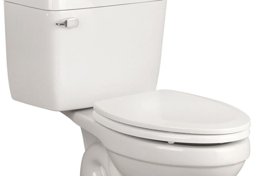Foremost Group's 1-Gallon Toilet
