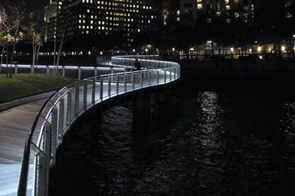 LED Handrail System