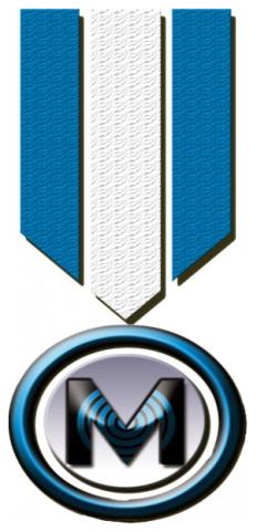 Medallion Pools Logo