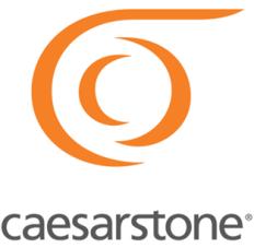 Caesarstone USA Logo