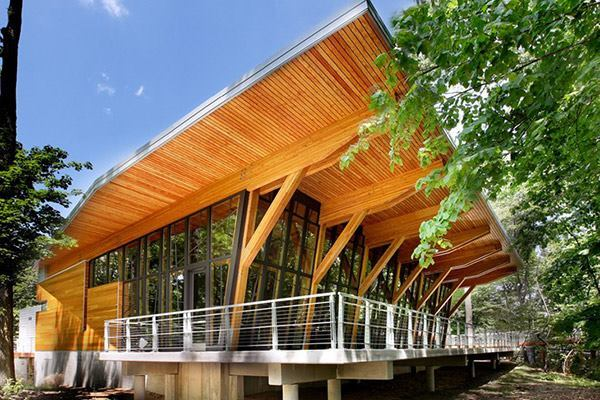 Bissell Tree House in Grand Rapids, Michigan by progressive | ae.