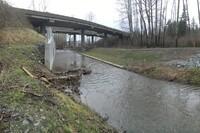 Squalicum Creek Reroute