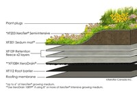 Building a Green Roof
