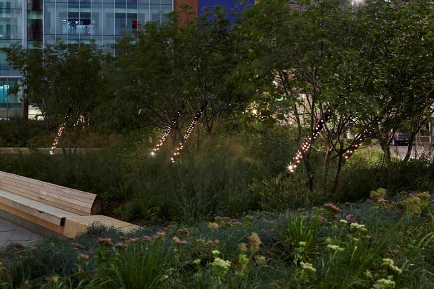 Perforated Cor-Ten steel pipes provide a decorative lighting element for the small trees in the planting beds.