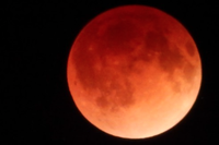 Eight Beautiful Views of Yesterday's Blood Moon