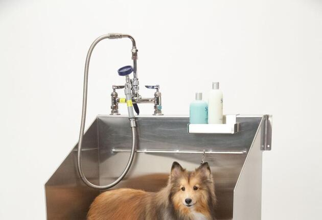 Home Products Designed with Pets in Mind