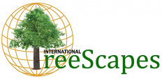 International Treescapes Logo