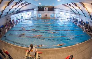 The Grizzly Pool at the University of Montana recently changed its sand media to glass. The results, a pool official says, are a cleaner pool and reduced backwash run times.