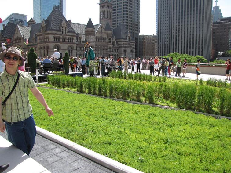 Green Roof Guidelines Published