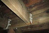 BRANZ Study Focuses on Fastener Corrosion