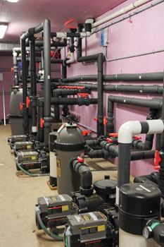 Clean lines: This plumbing is wrapped with black insulating sleeves to help retain heat.