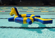 Ringo Sealed Inflatable Pool Toy