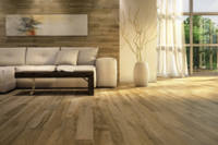 Formaldehyde-Free Products for Healthy Homes