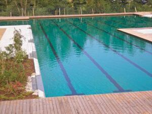 All Natural: Pools with plant-based water filtration are currently more popular in Europe, but that may change as the market for green technology continues to grow in the United States.