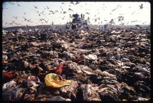 Fresh Kills landfill on Staten Island, pictured here in 1990, released more than 2,500 tons of methane gas daily--and had trash piles higher than the Statue of Liberty--before it closed in 2001. New York City plans to turn the 2,200-acre site into public parkland over the next 30 years.