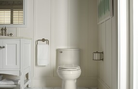 Artifacts™ Collection Towel Ring and Toilet Tissue Carriage bathroom accessories