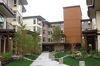 Site Transformation Adds Green Housing