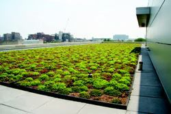The American Red Cross of Greater Chicago building has a modular green  roof. The 2800-square-foot roof was installed in the summer of 2004.