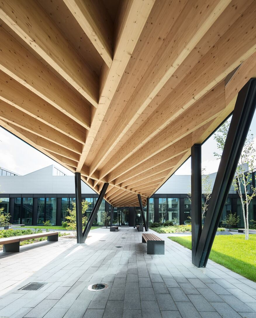 Wood ceiling detail on the covered pedestrian walkway in the central courtyard