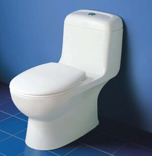 slight flush  Because conservation is important in Miller/Hull's work, the firm uses the Caravelle dual-flush toilet from Caroma USA. The one-piece unit offers the standard 1.6-gallon flush as well as a 0.8-gallon water-conserving second flush. Color choices are white or biscuit. Caroma USA, 800.605.4218; www.caromausa.com
