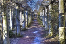 Take a Virtual Tour of the Hampstead Hill Garden & Pergola in London