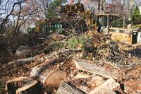 Hurricane Sandy relief efforts continue