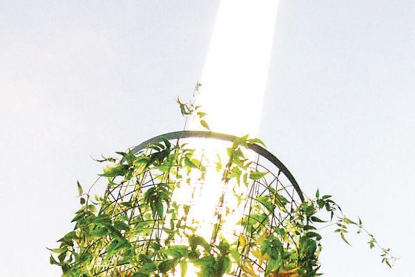 Greenscreen ColumnLight