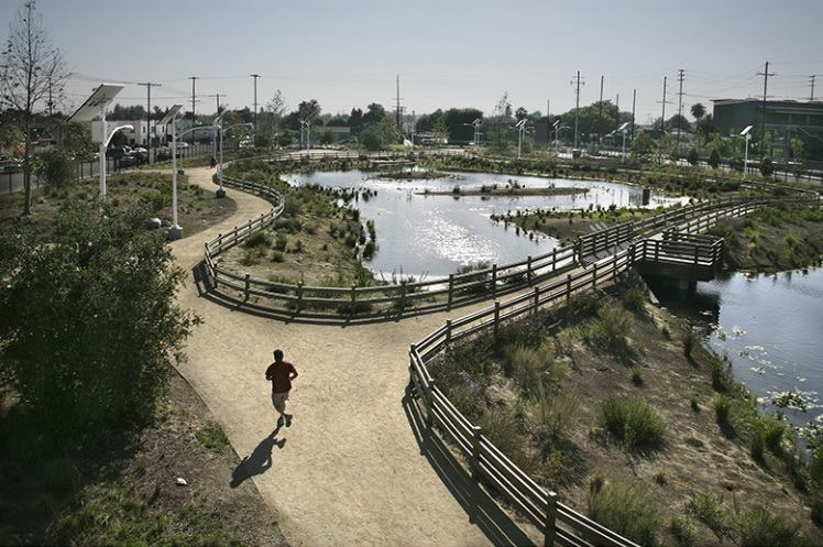 The South Los Angeles Wetland Park received the Envision Platinum Award, the highest level attainable in the ISI rating system.