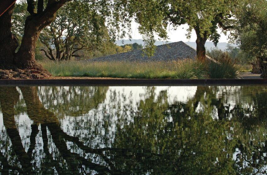Andrea Cochran's Approach to Landscape Design
