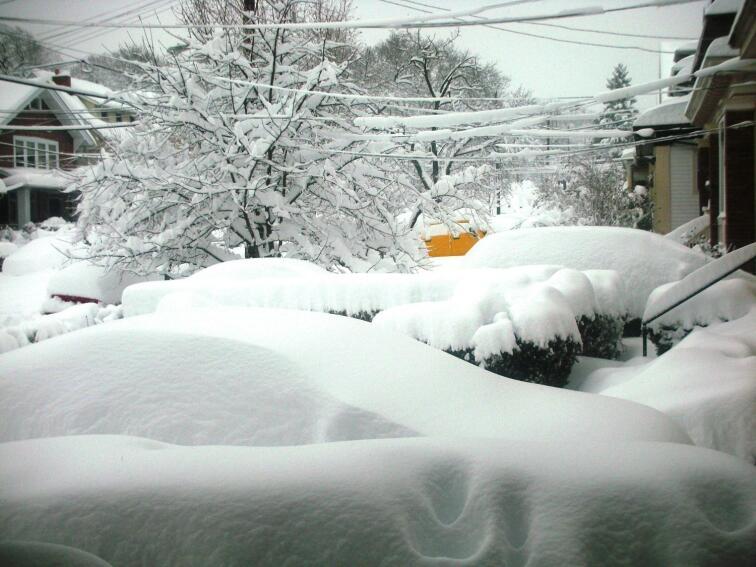 Combat Winter's Wrath