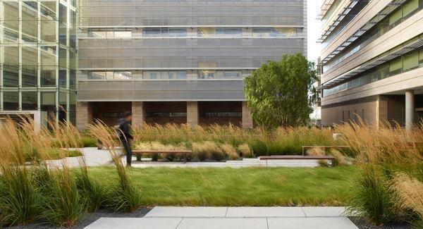 Courtyard of Smith Cardiovascular Research Building, University of California, San Francisco, 2012.