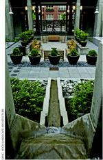 Koch Landscape Architecture, Portland, Ore., won a 2006 Green Roofs for Healthy Cities Green Roof Award of Excellence in the Special Recognition category for the 10th @ Hoyt Apartments in Portland. The courtyard green roof captures, conveys, and creatively displays stormwater runoff.