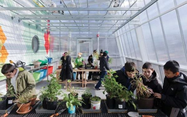 Students inside the greenhouse.