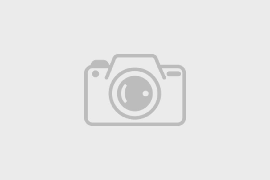Atlanta Ga Skyline From Piedmont Park