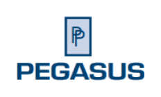 Pegasus Products, Inc. Logo