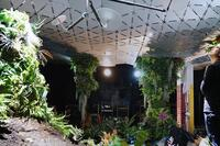 New York's First Underground Park Is Taking Shape