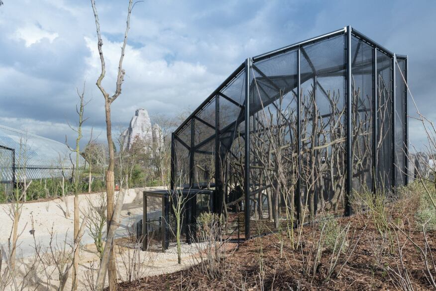 The small aviaries are made from black steel tubes overlaid with transparent wire mesh. Tschumi's 300-foot-long greenhouse (at left) contains plants and animals native to   the rainforest.