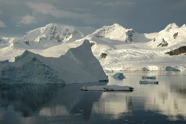 Neko Harbour in Antarctica